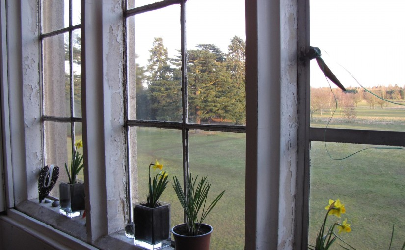 10 Types of Replacement Windows